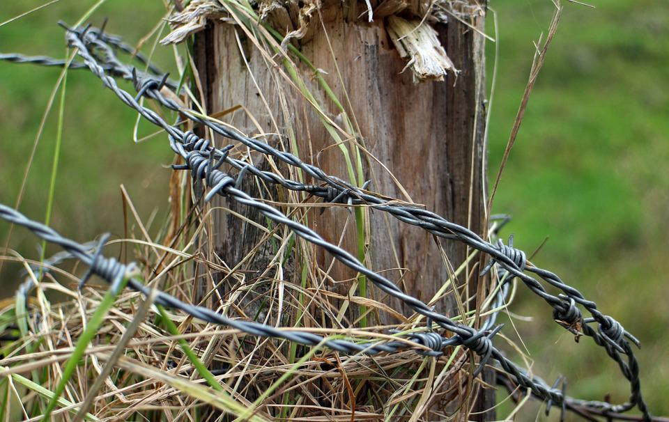 Barbed Wire, Post, Fence, Pile, Pasture, Fence Post