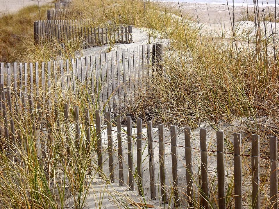 Grasses, Fence, Beach, Sand, Sand Fence, Sandbreak