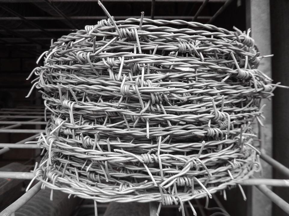 Barbed Wire, Roll Barbed, Metal, Spur, Wire, Fence