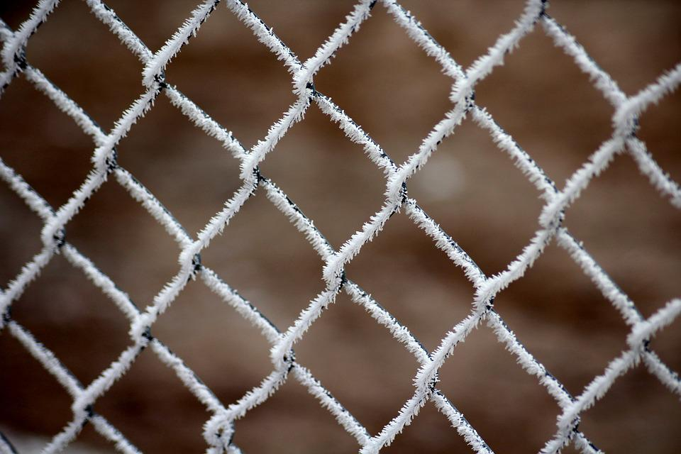 Frost, The Grid, Fencing, January, Frozen, Wire, Cold