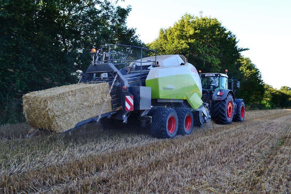 Harvest, Wheat, Fendt