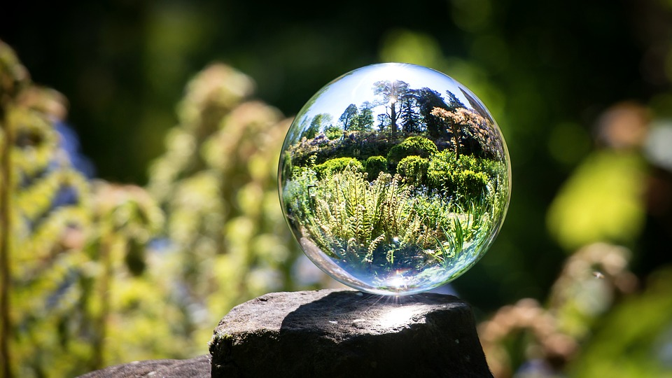 Glass Ball, Garden, Fern, Spring, Globe Image, Grow