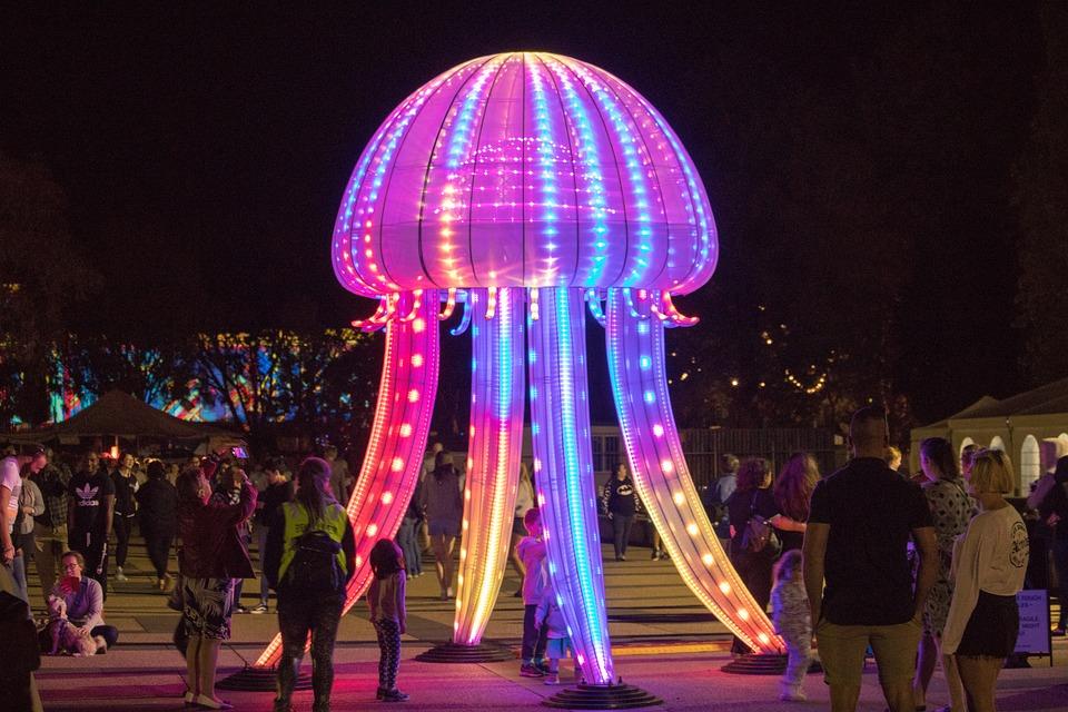 Fun, Party, Nightlife, Festival, Evening, Illuminated