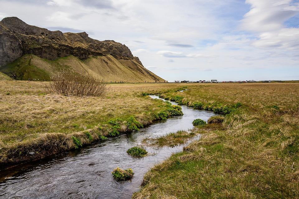 Stream, Brook, Meadow, Field, Mountain, Tundra