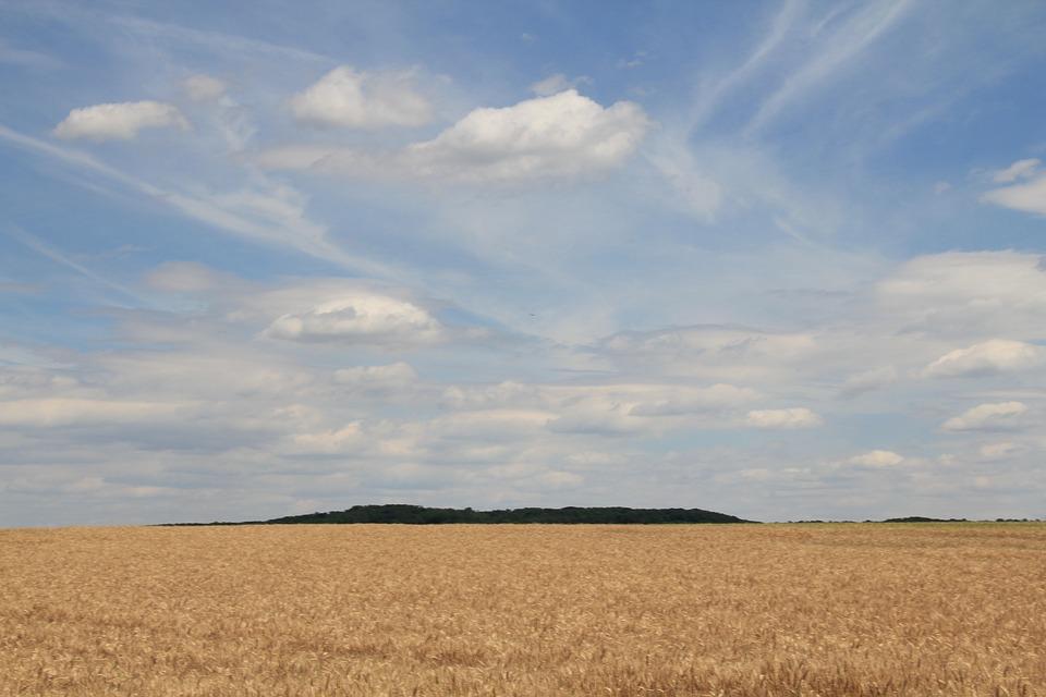 Landscape, Austria, Field, Clouds, Summer, Cereals