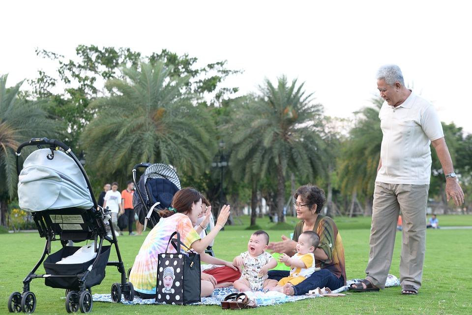 Family, Picnic, Park, Field, Babies, Children, Kids