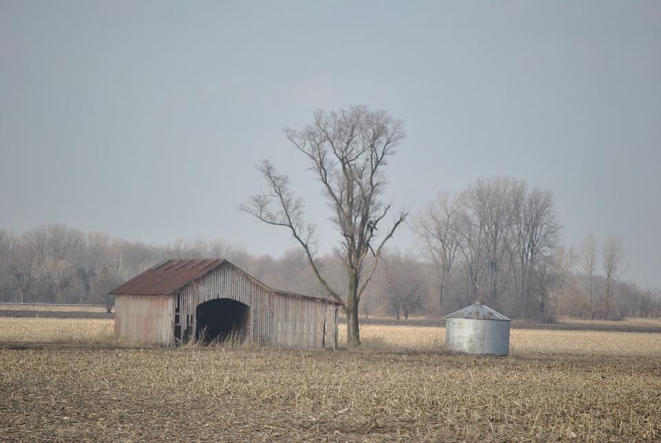 Barn, Farm, Agriculture, Field, Landscape