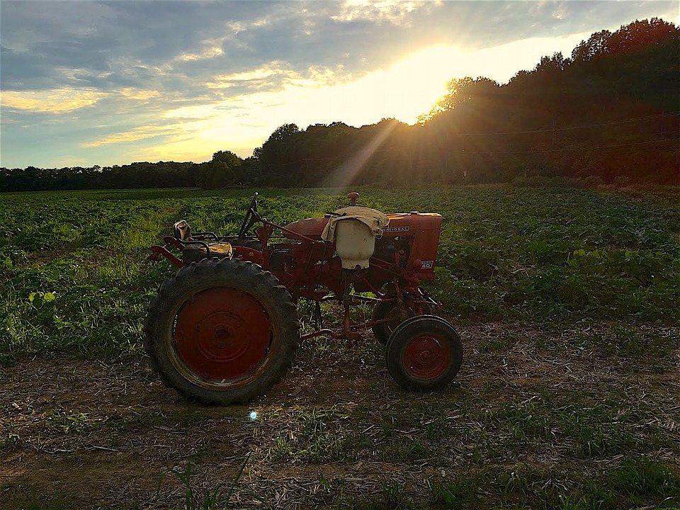 Tractor, Farm, Sunset, Light, Agriculture, Field, Rural
