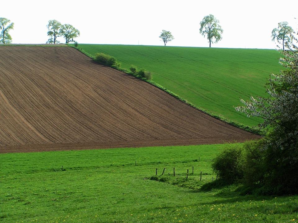 Belgium, Landscape, Field, Furrow