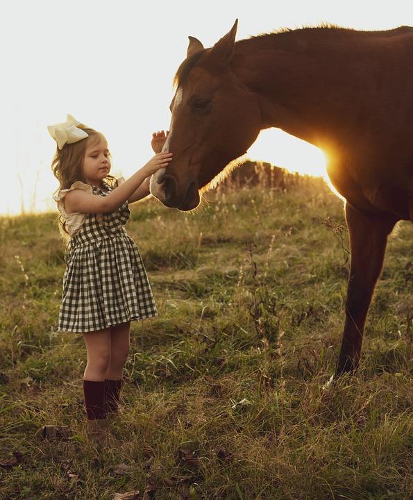 Horse, Sunset, Girl, Child, Field, Farm, Dress, Ranch