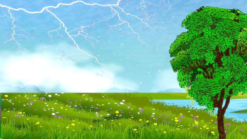 Field, Meadow, Tree, River, Flowers, Grass, Thunder