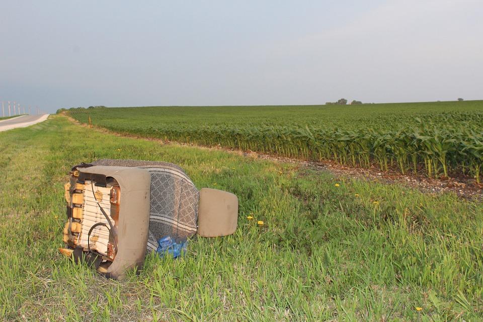 Grass, Field, Nature, Landscape, Agriculture, Iowa