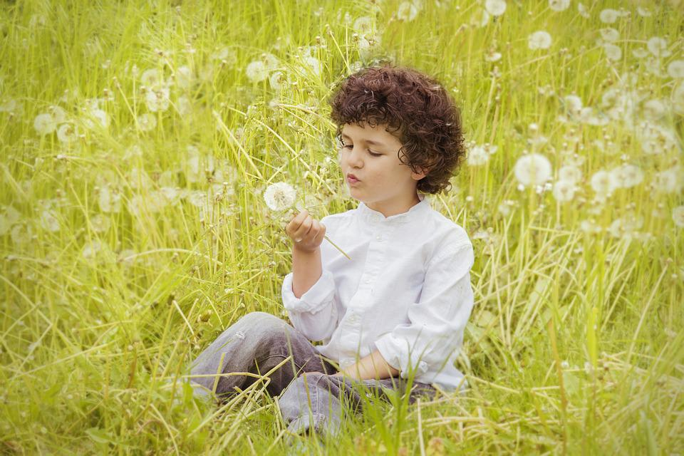 Flowers, Child, Happy, Happiness, Field, Mount