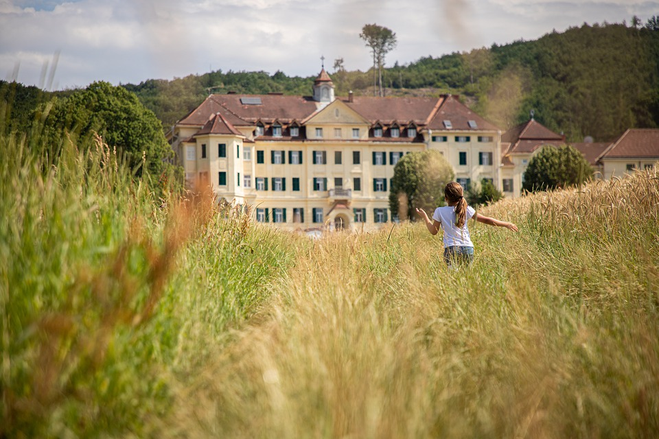 Field, Nature, Mansion, Run