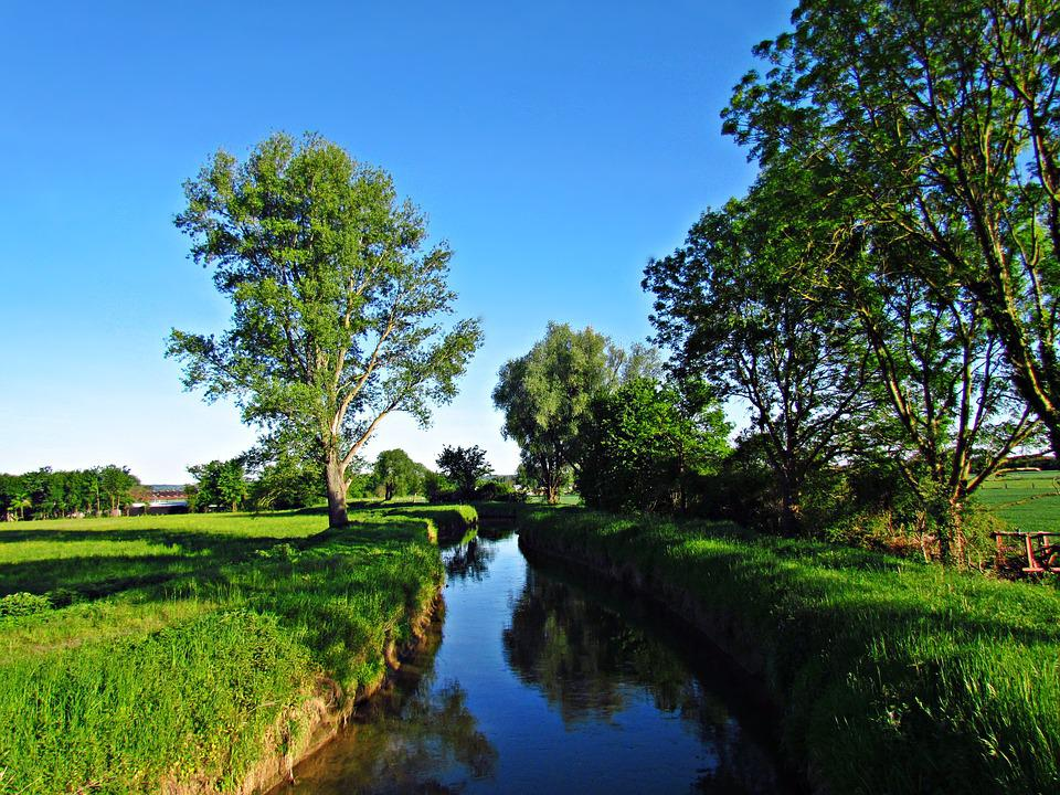 Water, Brook, The Brook, Field, Meadow, Landscape
