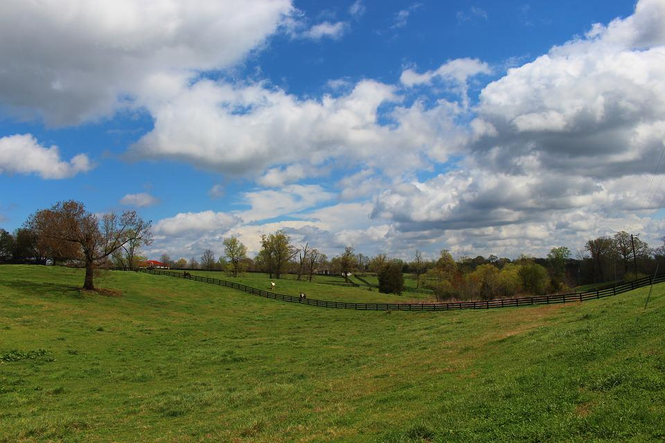 Meadow, Sky, Clouds, Vast, Open, Space, Spring, Field