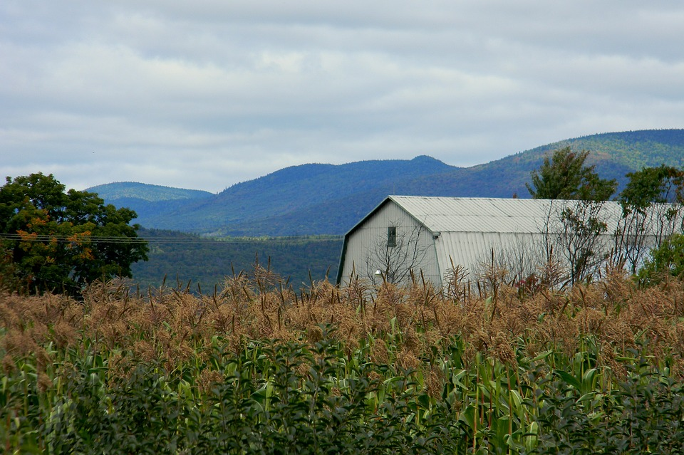 Farm, Landscape, Field, Rustic Building, Prairie