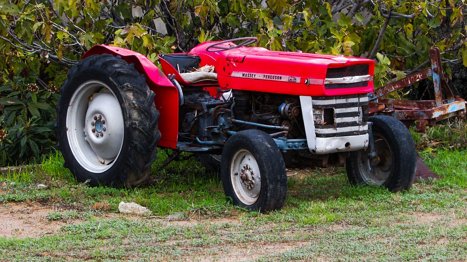 Tractor, Red, Agriculture, Field, Farm, Rural