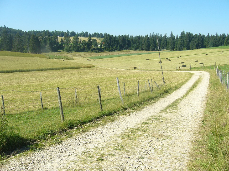 Switzerland, Road, Field