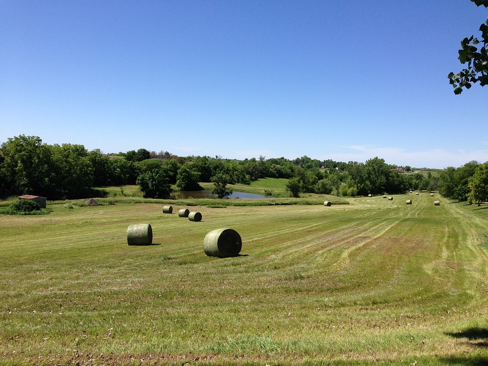 Hay, Bale, Field, Rural, Landscape