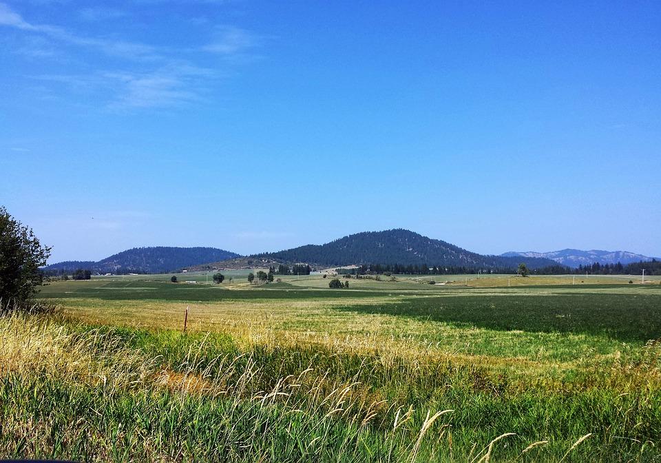 Field, Mountain Scenery, Landscape, Scenery