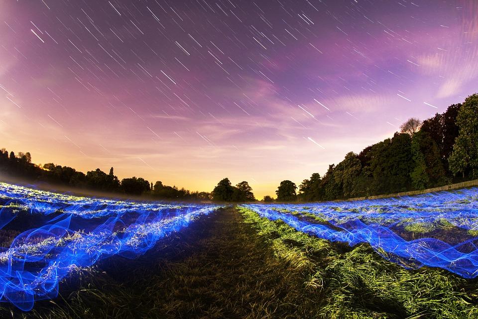 Stars, Field, Long Exposure, Night, Lights, Motion