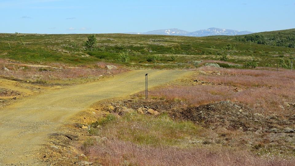 Landscape, Path, Planina, Field Trip, Mountains