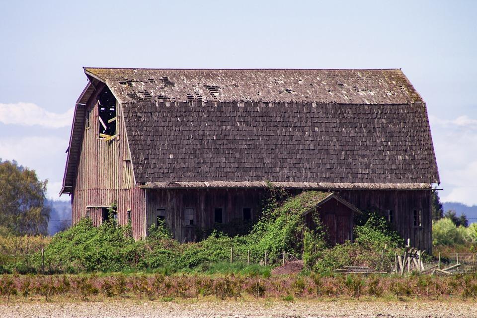 Barn, Farm, Field, Countryside, Washington State