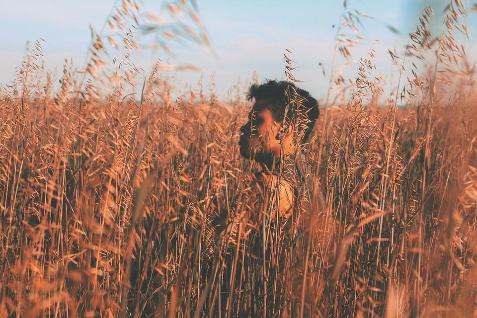 Hipster, Wheat, Barley, Field, Life, Scene