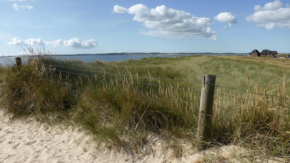 Dunes, Sand, Wide, North Sea, Pasture, Field, Water