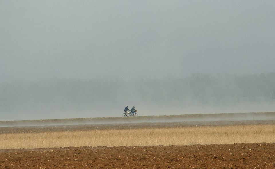 Bikes, Fields, Mist, Landscape, Field