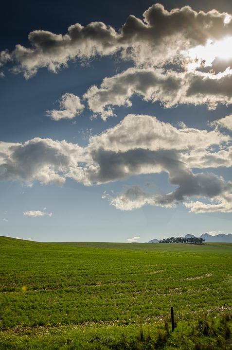 Meadows, Pasture, Grass, Fields, Sky, Landscapes