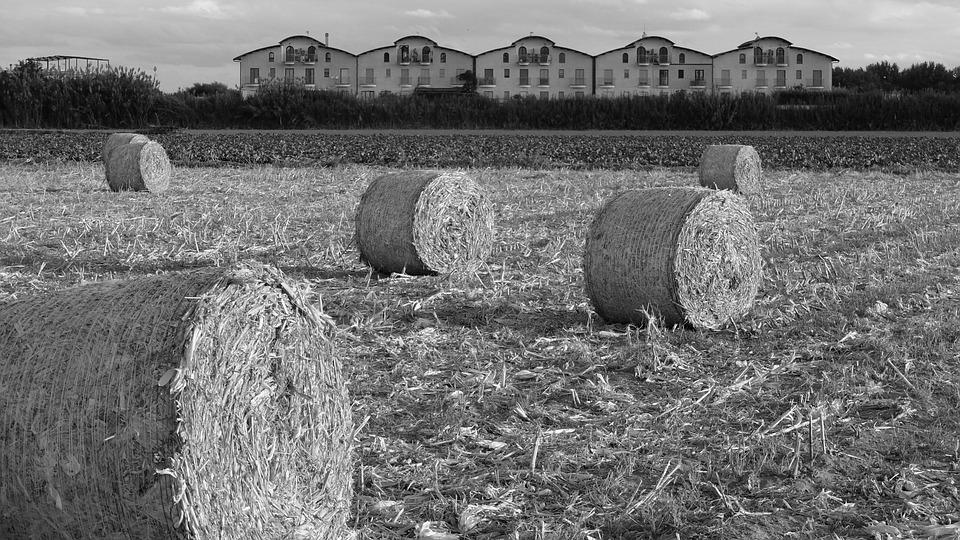 Field, Straw Bales, Campaign, Fields, Bales, Round