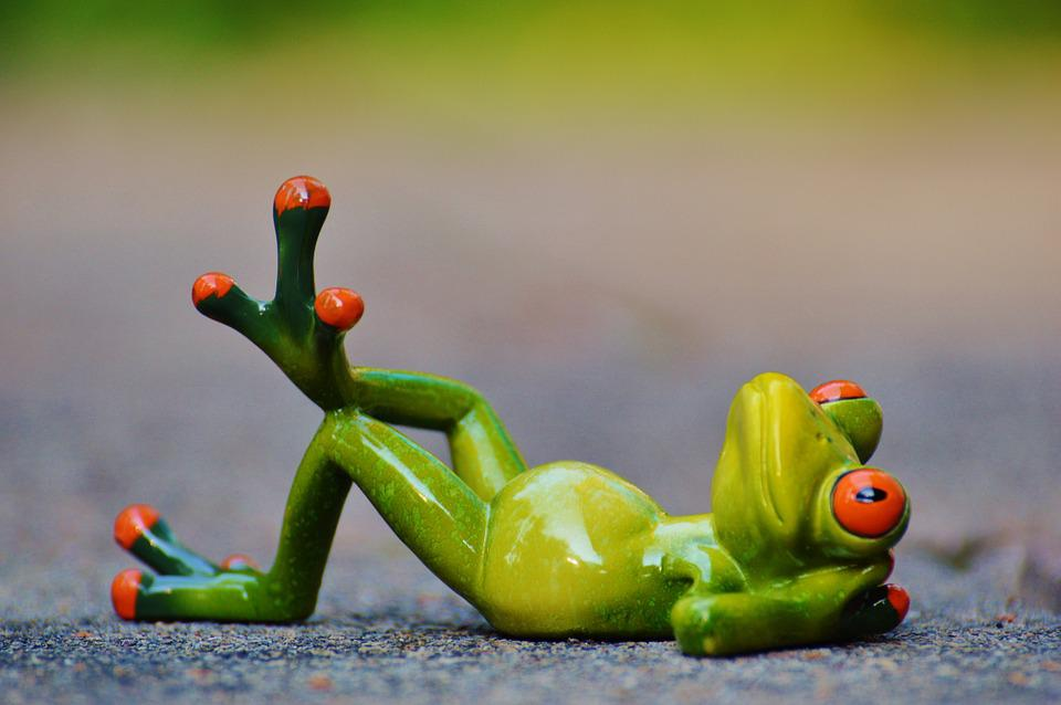 Frog, Relaxed, Fig, Funny, Rest, Relaxation, Lying