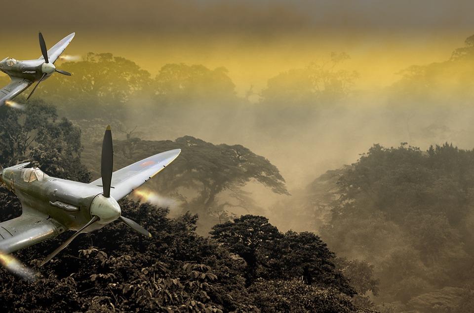 Fighter Aircraft, Aircraft, Jungle, Propeller Plane