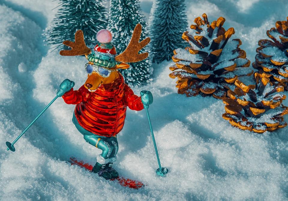 Moose, Figure, Comic, Reindeer, Skiing, Ski, Sport