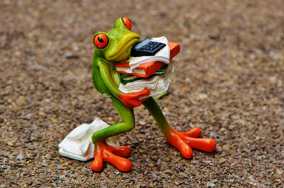 Frog, Figure, Files, Stack, Files Stacked, Office