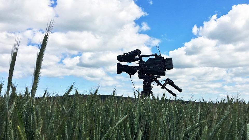 Sky, Grass, Field, Film Camera, Clouds