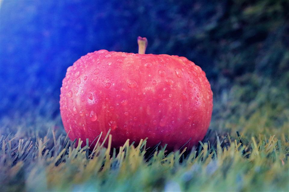 Apple, Meadow, Filter