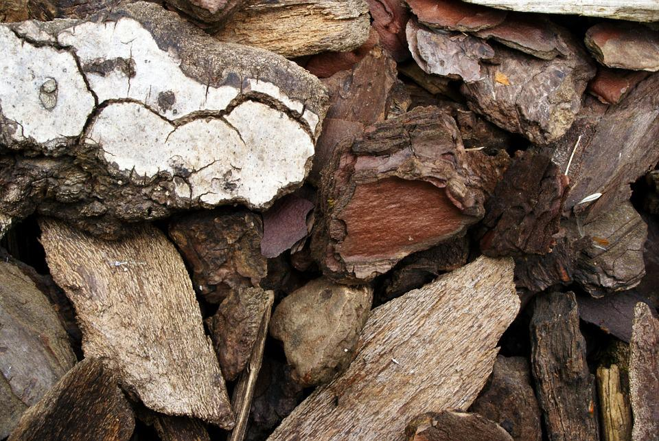 Wood, Fir, Ground Cover, Natural, Garden, Shavings