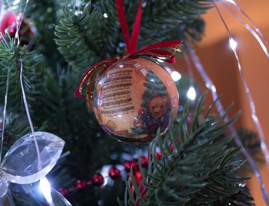 Christmas, Winter, Celebration, Shining, Pinus, Fir