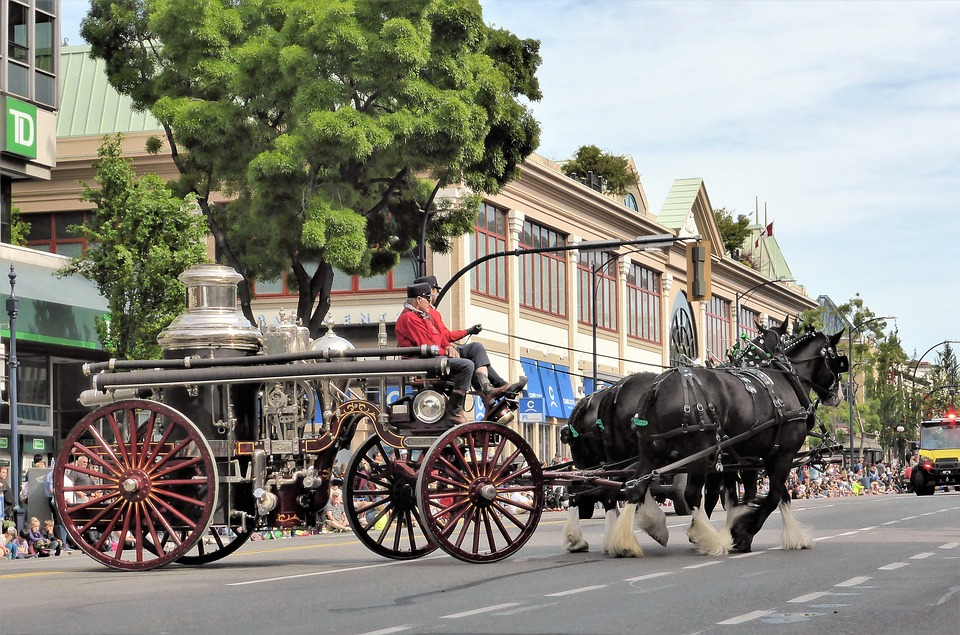 Coach, Horse And Carriage, Antique Car, Fire Department