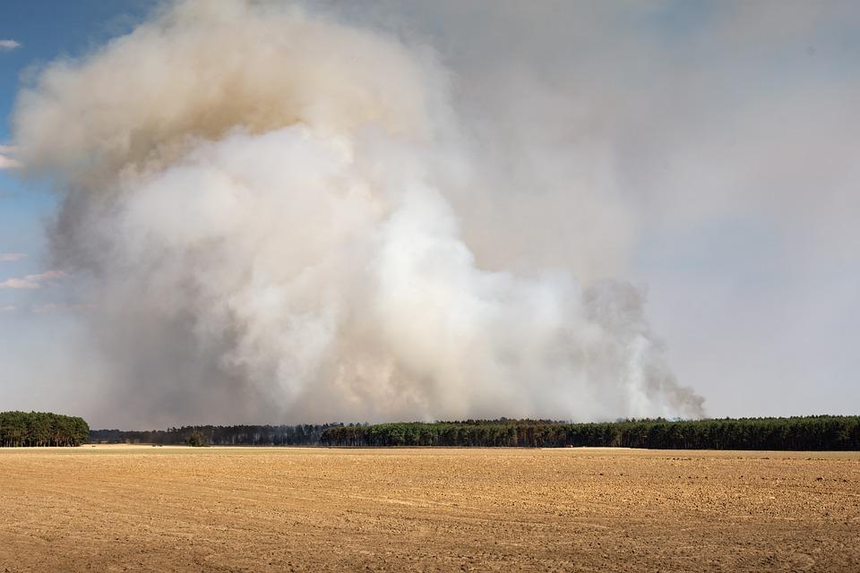 Brand, Forest Fire, Risk, Forest Fire Danger, Fire