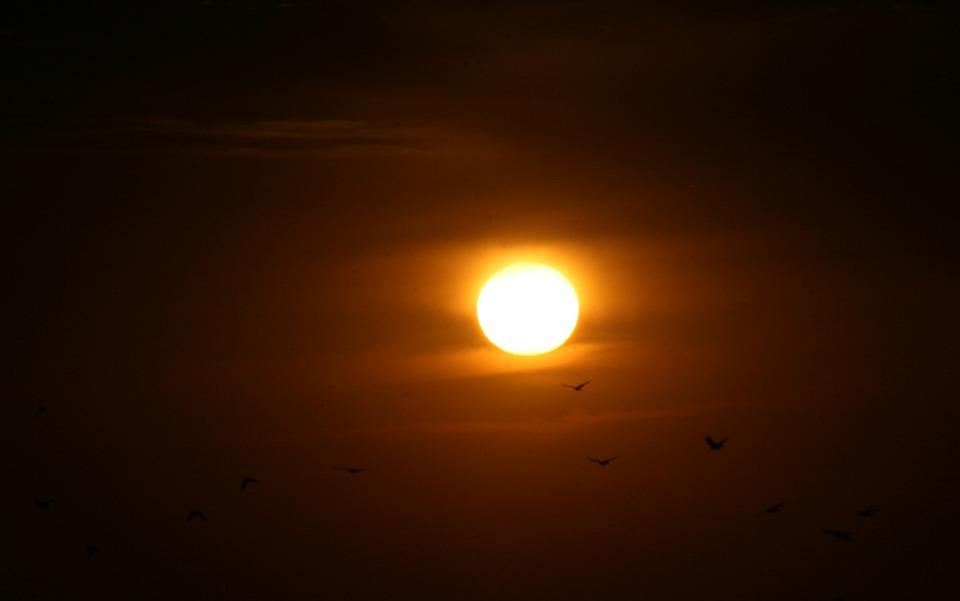 Sunset, Sun, Birds, Red, Fire, Sky, In The Evening