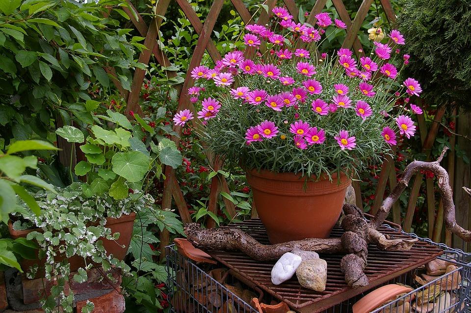 Margaritte, Flowerpot, Terracotta, Fired Clay, Deco