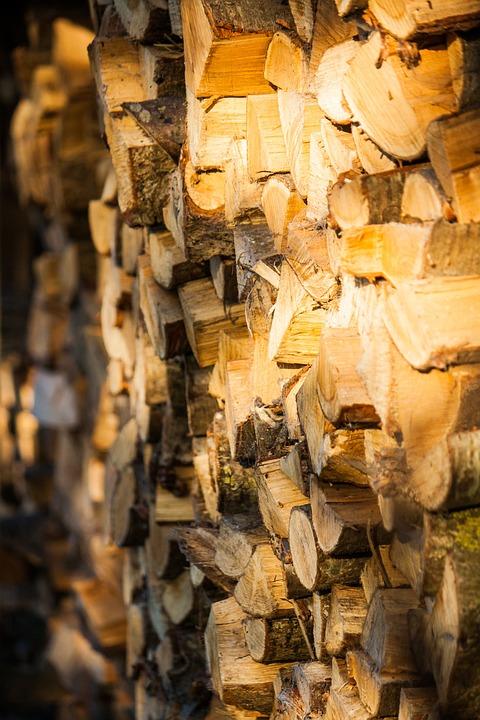 Wood, Combs Thread Cutting, Firewood, Growing Stock