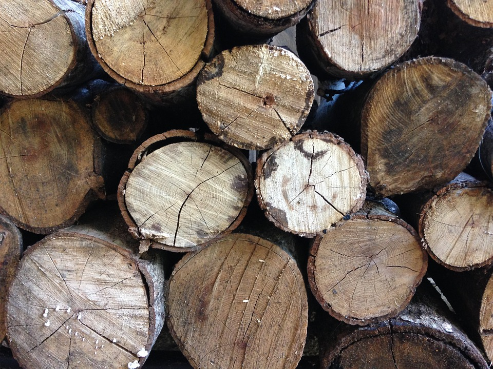 Woodpile, Lumber, Timber, Firewood, Wooden, Log, Fuel