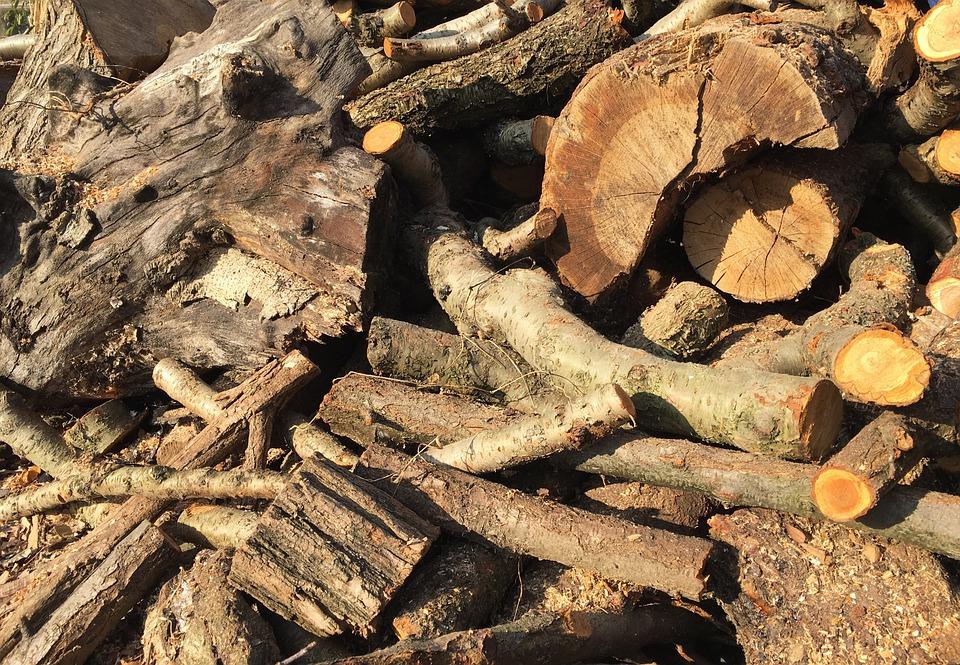 Wood, Firewood, Log, Stem, Also Clearly Sense, Plants