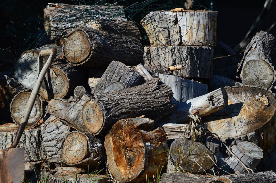 Firewood, Woodpile, Wood, Pile, Stack, Timber, Cut