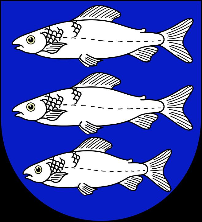 Fish, Coat, Arms, Ocean, Sea, Animal